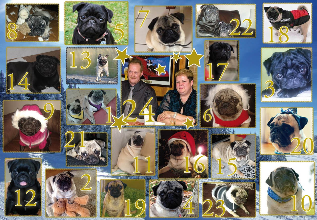 mops_advent_2014