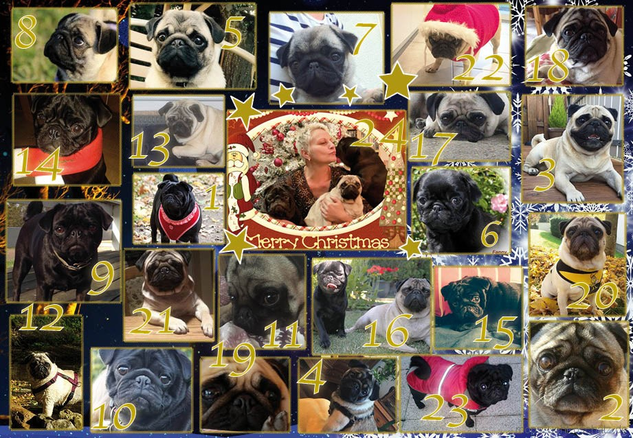 mops_advent_2015